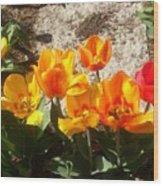 Springtime Flowers Wood Print