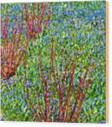 Springtime Impression Wood Print