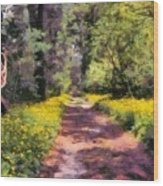 Springtime In Astroni National Park In Italy Wood Print