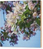 Springtime In Bloom Wood Print