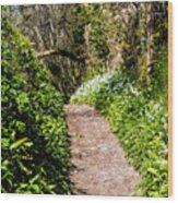 Springtime In Dorset Wood Print
