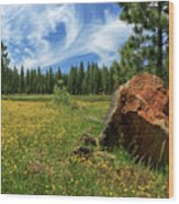 Springtime In Lassen County Wood Print