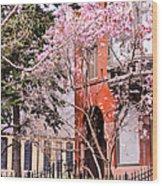 Springtime In Lincoln Park Wood Print