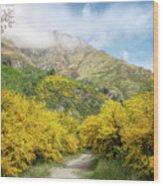 Springtime In New Zealand Wood Print