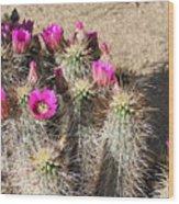 Springtime In The Desert Wood Print