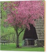 Springtime In The Park Wood Print by Lori Frisch