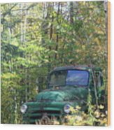 Springtime In The Woods Of Maine Wood Print