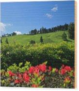 Springtime Landscape Wood Print