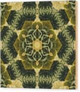 Springtime  Mandala Wood Print