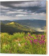 Springtime Mountain Wood Print