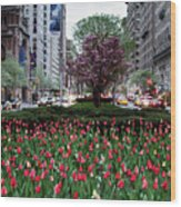 Springtime On Park Avenue Wood Print