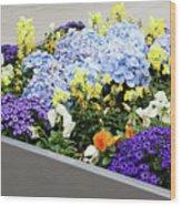 Springtime Planter Wood Print
