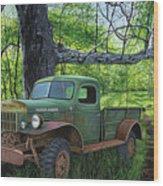 Springtime Power Wood Print