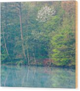Springtime Reflection Wood Print