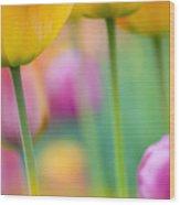 Springtime Wood Print by Silke Magino
