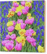 Springtime Tulips 01 Painterly Effecy Wood Print
