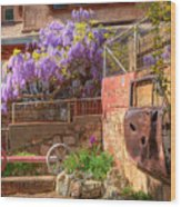 Springtime Wisteria In Old Bisbee Wood Print