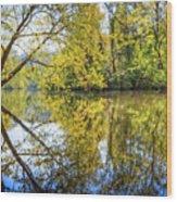 Springtime Yellows And Blues Wood Print