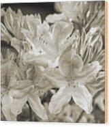 Sprint Flowers B/w 1 Wood Print