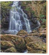 Spruce Flat Falls Wood Print