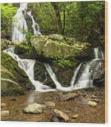 Spruce Flats Falls 2 B Wood Print