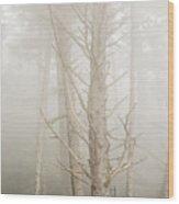Spruce In The Fog Wood Print