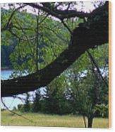 Spruce Knob Silhouette Wood Print