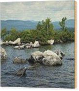 Squam Lake, New Hampshire Wood Print