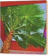 Square Palm Wood Print