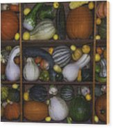 Squash And Gourds In Compartments Wood Print