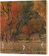 Squaw Creek Egrets Wood Print