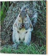 Squirrel Friend Wood Print