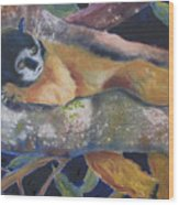 Squirrel Monkey Revised Wood Print