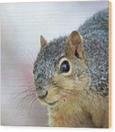 Squirrel Portrait Wood Print