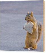 Squirrel Sandwich Wood Print