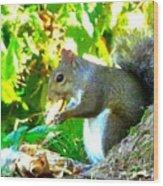 Squirrel1 Wood Print