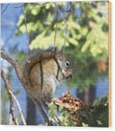 Squirrels Spring Meal Wood Print