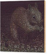 Squirrely Art Wood Print