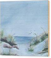 Ssi Beach Wood Print