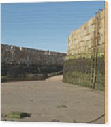 St Andrews Pier At Low Tide Wood Print