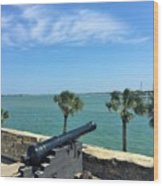 St. Augustine Historical Fort Wood Print