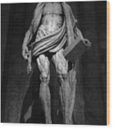 St. Bartholomew In Milan Cathedral By Marco D'agrate In Black And White Wood Print