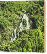 St Columba Falls Tasmania Wood Print