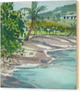 St. Croix Beach Wood Print