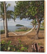 St. Croix Beach Wood Print