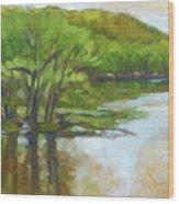 St. Croix, Spring Flood Wood Print