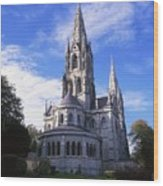 St Finbarrs Cathedral, Cork City, Co Wood Print