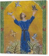 St. Francis And Birds Wood Print