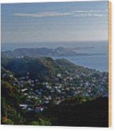 St. George's Grenada Wood Print