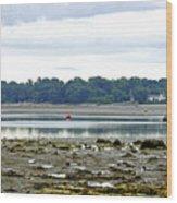 St Helens Beach To Bembridge Point Wood Print